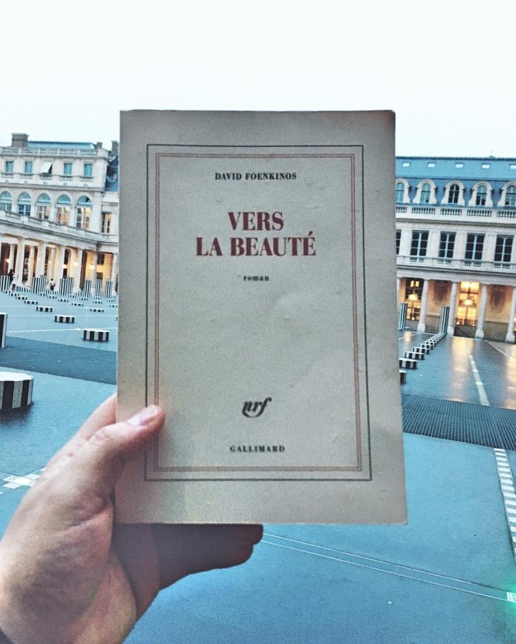 Vers la beauté David Foenkinos
